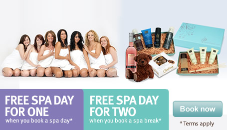 Group Offer<br /> FREE Spa Day