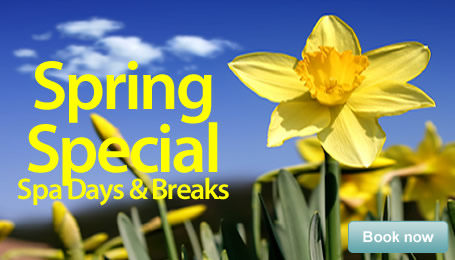 Srping Specials </br> Spa Days & Breaks